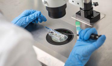 First steps toward In Vitro Fertilization in America